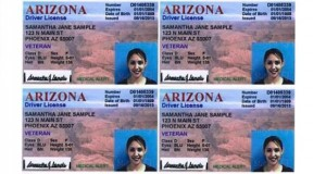 veteran-designated-driver-license-sample