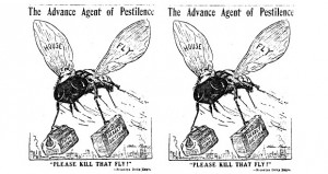 The Great Bisbee Fly Swatting Contest of 1912