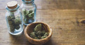 marijuana-pot-weed-web