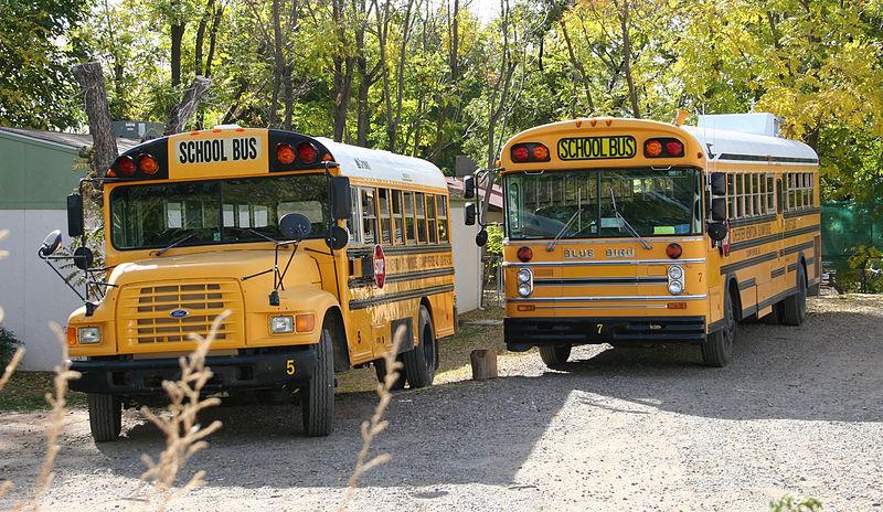 800px-azschoolbuses