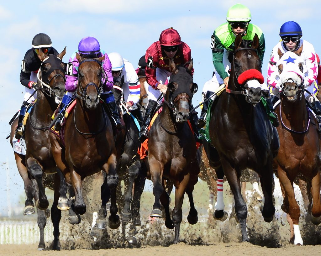 One Bad Boy, second from right, ridden by jockey Flavien Prat, races in the pack on his way to winning the Queen's Plate horse race at Woodbine Racetrack in Toronto on Saturday, June 29, 2019. (Frank Gunn/The Canadian Press via AP)